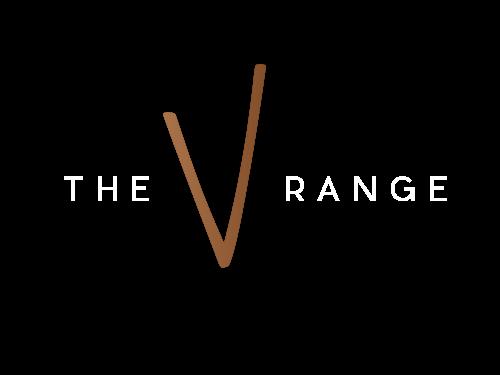 Training_Recruitment_Strategy_AvA-V_TheVRange